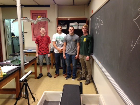 "The ""Bonnan Beardies"" crew with our treadmill (center) and motion capture system (left).  From left to right, Alex Lauffer, Kieran Tracey, Alex Hilbmann, and Corey Barnes."